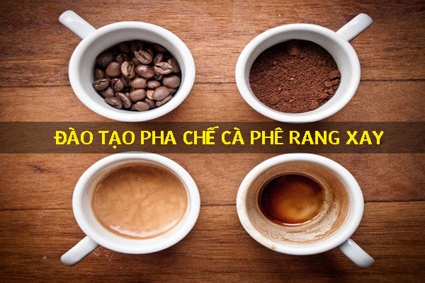 dao-tao-pha-che-ca-phe-rang-xay-nguyen-chat