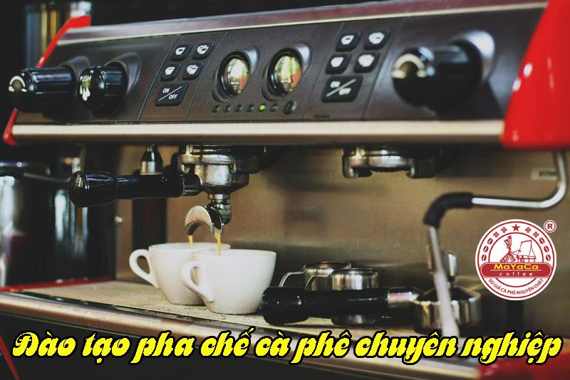 dao-tao-pha-che-cafe-chuyen-nghiep
