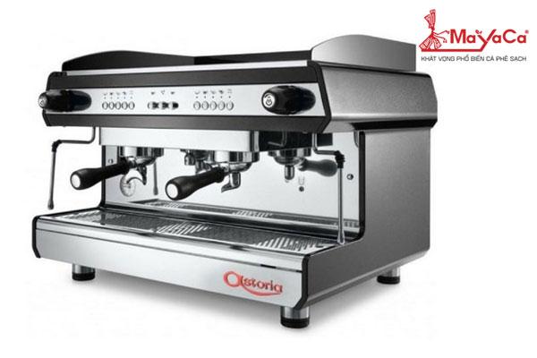 Máy pha cà phê Astoria Tanya 2 Group