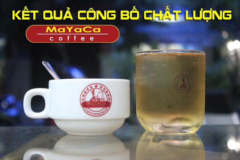 chat-luong-caphe-mayaca