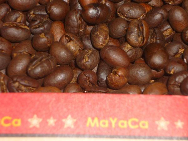 hat-cafe-va-nhieu-cong-dung-hay