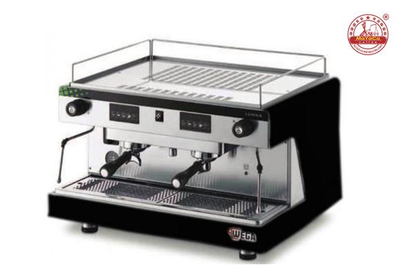 Máy pha cà phê wega pegaso evd 2gr