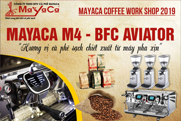 workshop-mayaca-2019-mayaca-m4-bfc-aviator
