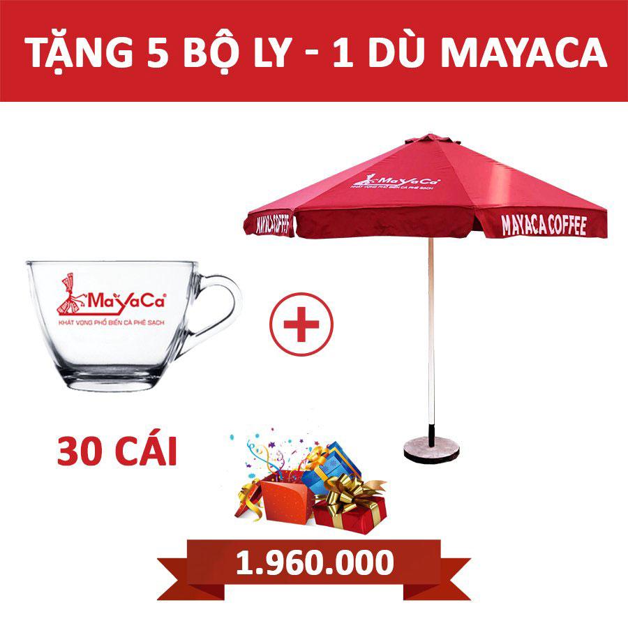 tang-du-mayaca