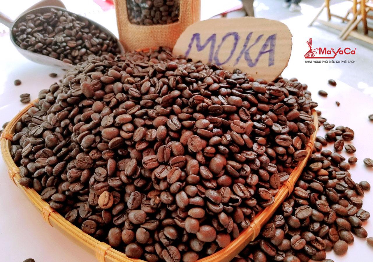 ca-phe-moka-la-gi-nguon-goc-mayacacoffee