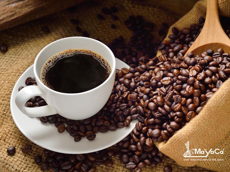 thuong-thuc-ca-phe-moka-nguyen-chat-mayacacoffee